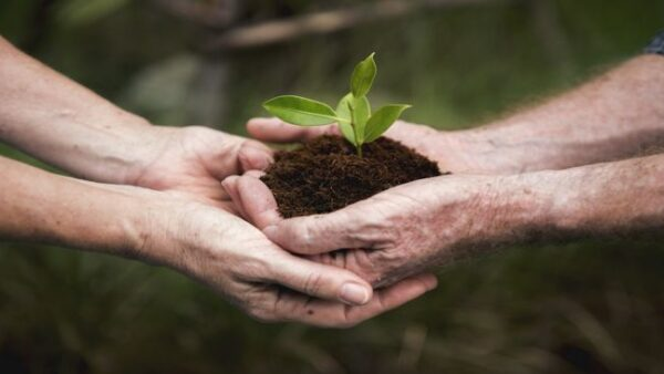 Beitrag zur Nachhaltigkeit